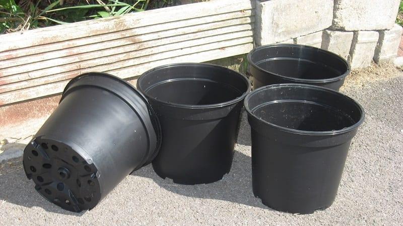 Choose plastic or glazed pots.