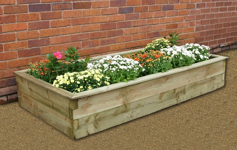 If the ground is very sandy, swampy, rocky, or high in clay content, consider growing your cutting garden in a raised bed with amended soil.