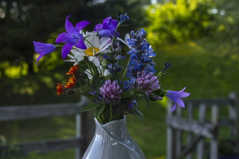 Many gardeners are reluctant to cut blooms from their flowerbeds for fresh indoor bouquets.