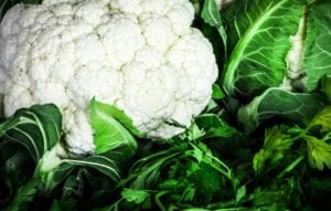 Cauliflowers in Containers