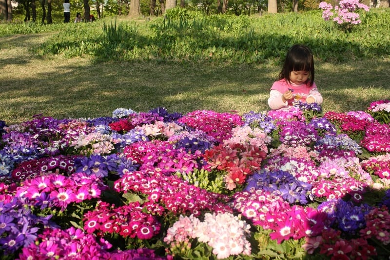 Gardening is good for building muscles, fine motor skills, and coordination.
