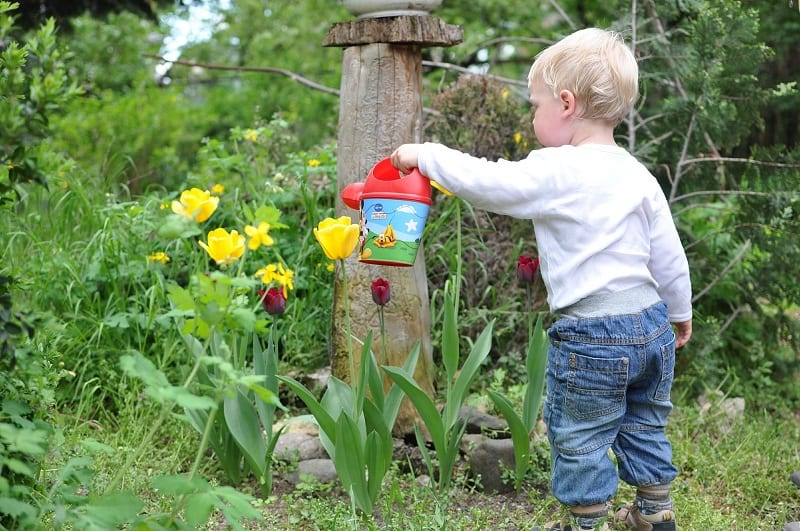Growing plants is a joyous and magical experience and should be part of every child's upbringing