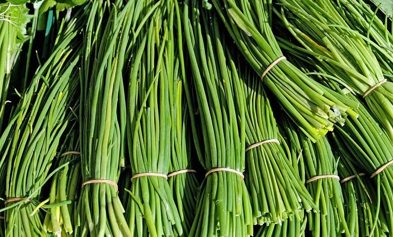 Chives are easy to divide, so ask fellow gardeners if they have any to share.