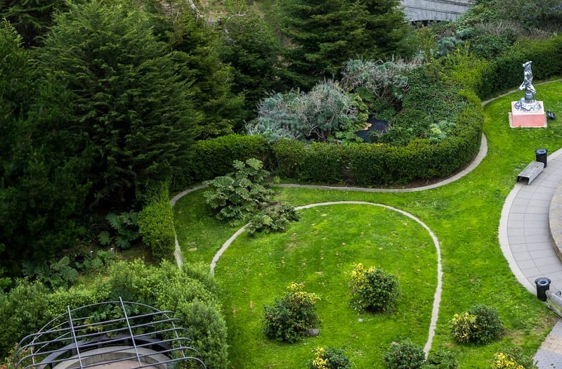 Contours intercept the flow of rainfall and steer it to any area the gardener wants.