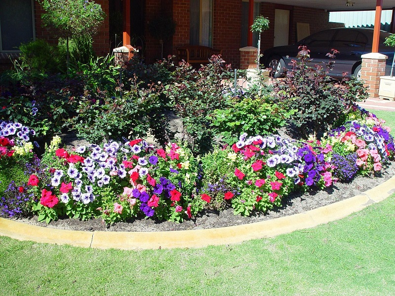 Grow flowers in large patches of like varieties to allow bees to feed in one spot for long periods of time.