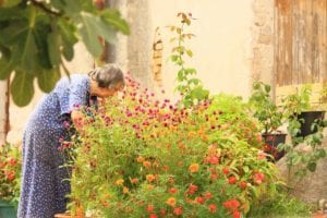 Gardening to Relieve Stress