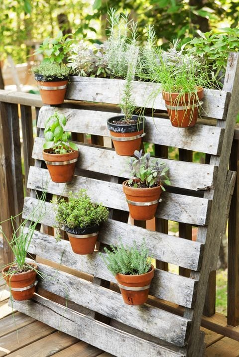Pallets make the perfect movable backing for a pot wall