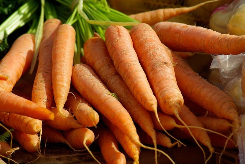 Carrots grow better when their root systems can easily penetrate the ground.