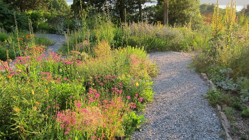 Irregular outlines create a range of temperatures which encourage greater biodiversity in your garden.