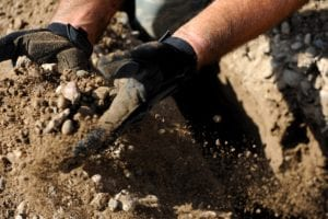 How and When to Build a Double-Dig Garden Bed