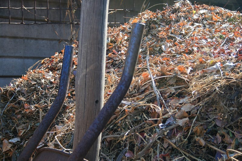 Cover the woodpile with materials you would normally include in your compost heap.