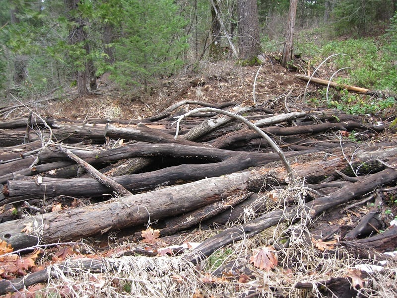You can use whole logs, branches, and twigs. Experts recommend using a mix of hard and soft wood.
