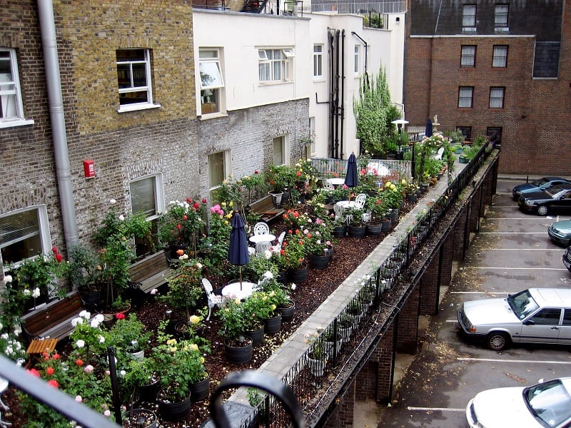 City dwellers have been growing plants on roofs and fire escapes for generations.
