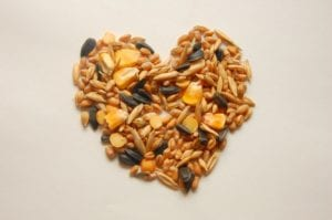 Starting a Home Seed Bank for Your Garden and Family