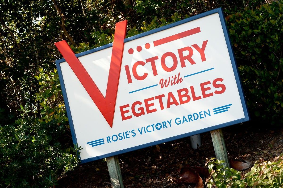 10 Vegetables to Grow in Your Coronavirus Victory Garden