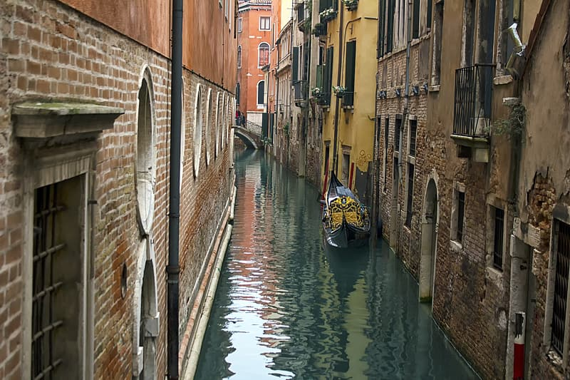 he strict rules of self-confinement in Venice have emptied the canals of motorized boat traffic, which usually churns up mud from the canal floor.