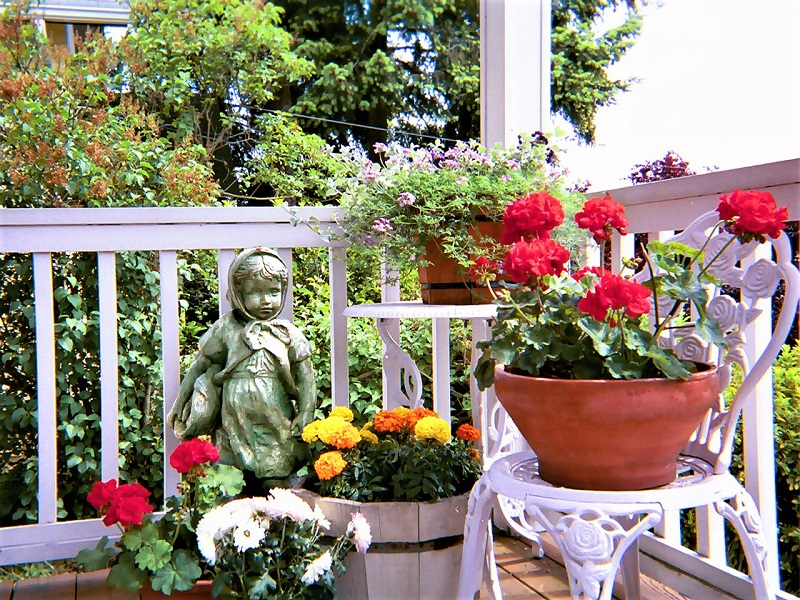 Keep any container plants looking their best with regular watering, fertilizer, and deadheading.
