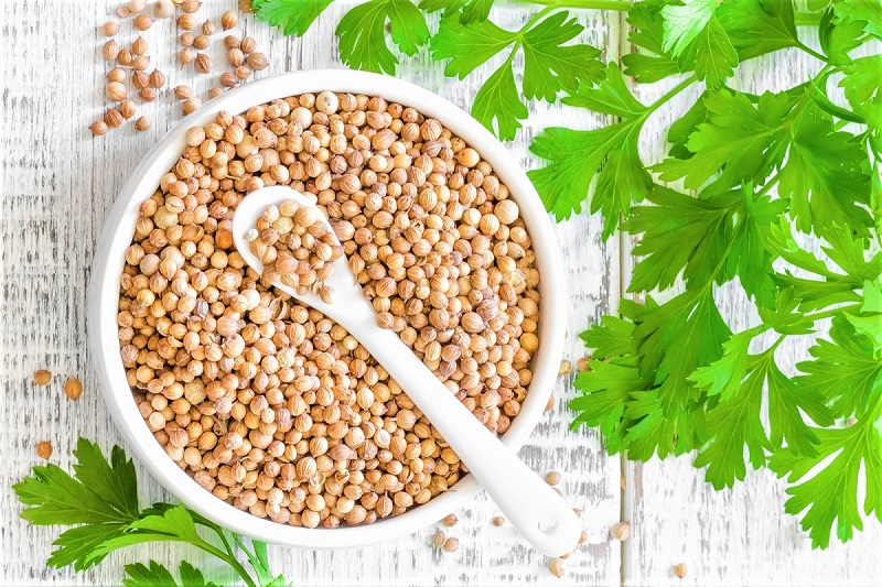 European cooks have been using coriander seeds to imbue a bright flavor to their dishes for thousands of years.