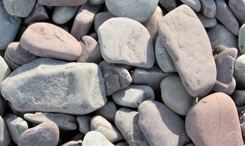 You can use large, flat stones to keep your plants warm on unseasonably cold nights.