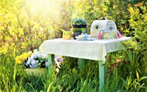 How to Use Herbs in Your Summer Garden's Design