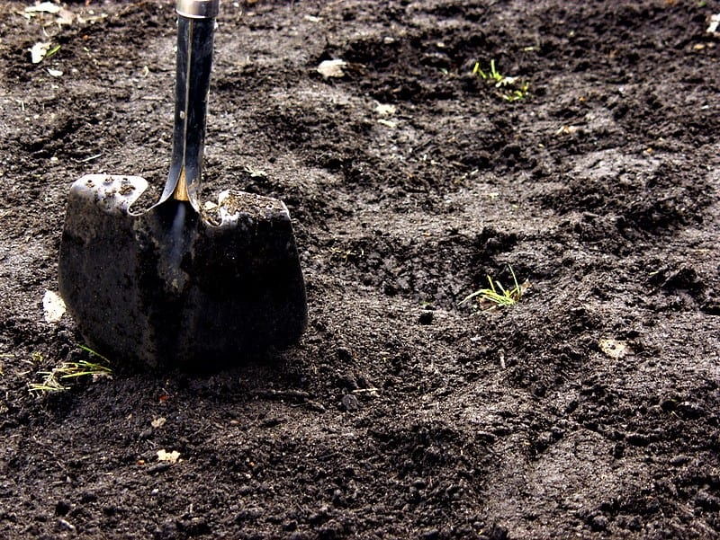 The angled shovel blade makes it efficient for digging.