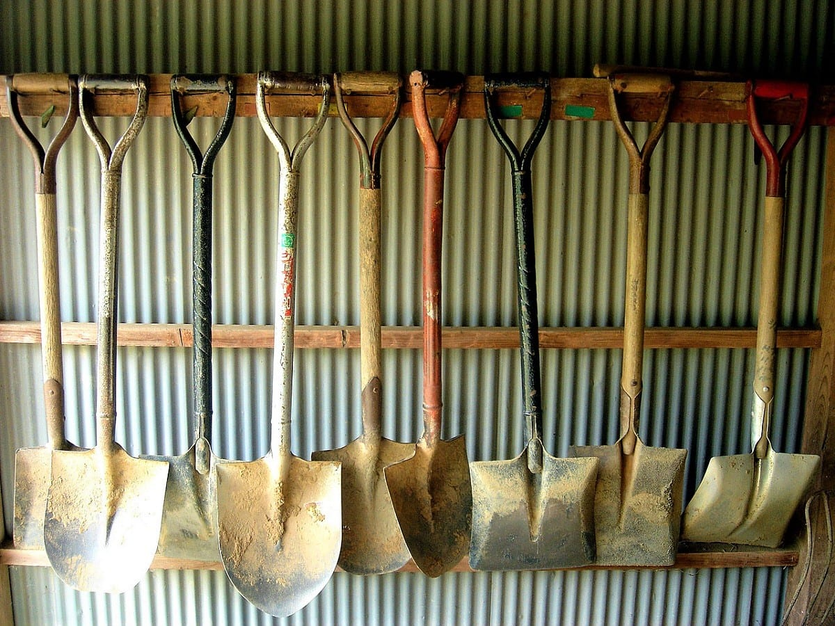 Shovels and Spades: Which to Use for What in the Garden