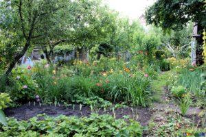 6 Summer Chores for the Tireless Gardener