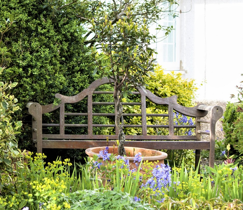 In time, your garden can contribute significantly to the growing resurgence of the natural world.