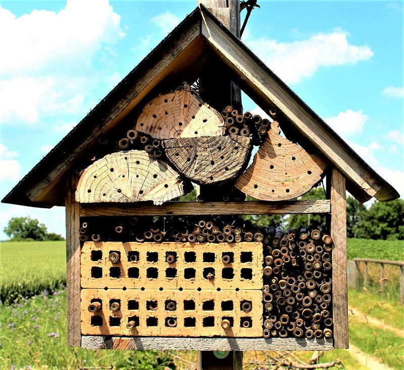 Natural, locally available nesting materials are best for a bee house.