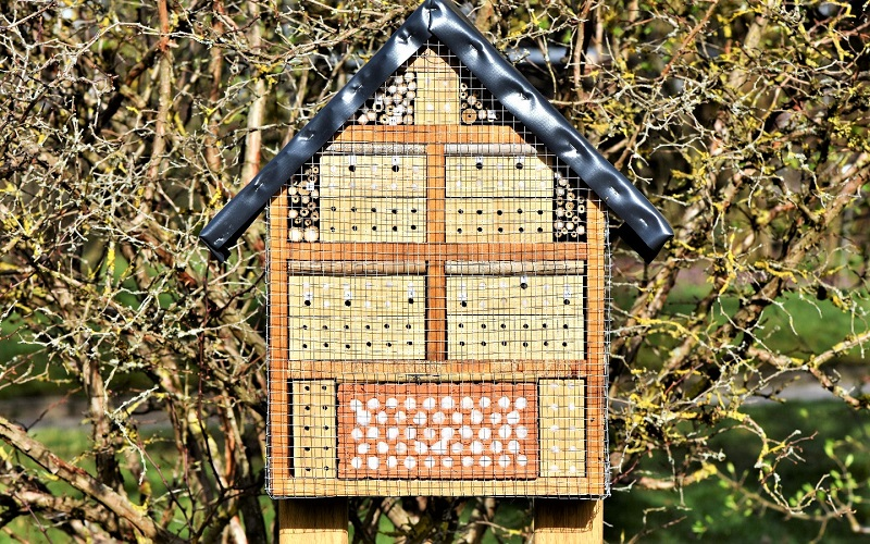 If birds make a habit of raiding the nesting holes, find a wire mesh and wrap it around the bee house.