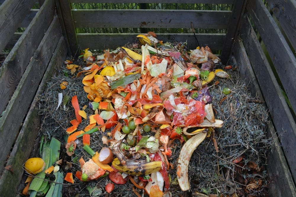 Composting is great for the environment and even better for your garden!