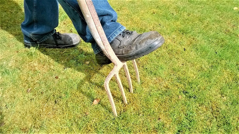 Aerating your lawn will help to improve soil permeability.