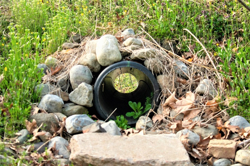 The French drain is a common solution to drainage problems.