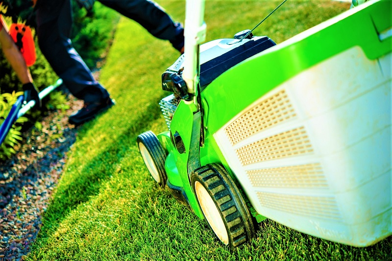 The general rule of thumb is to only remove a third of the leaf blade with each mow.