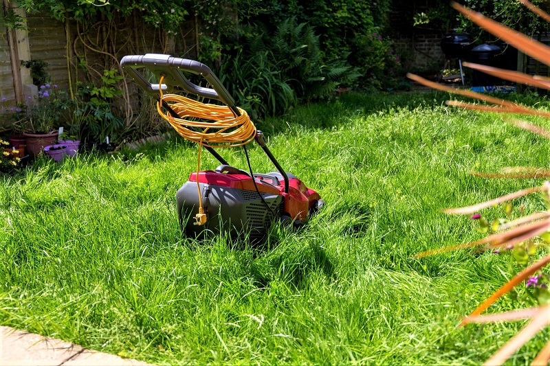 Is your lawn overgrown?