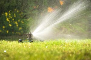 The Best Sprinklers for Your Lawn and Garden