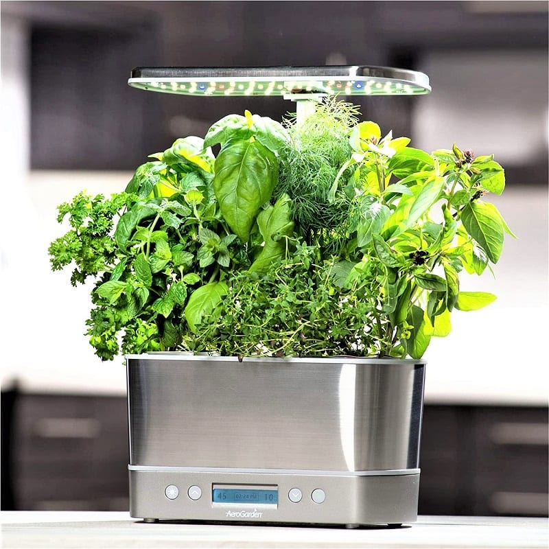 The AeroGarden Harvest Elite lets you grow herbs and vegetables all year round without the need for direct sunlight.