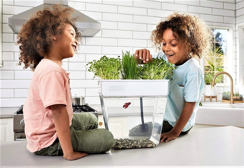 So, you want an aquarium and a small indoor garden but don't have space for both? The Back to the Roots Water Garden and Fish Tank provides the perfect solution.