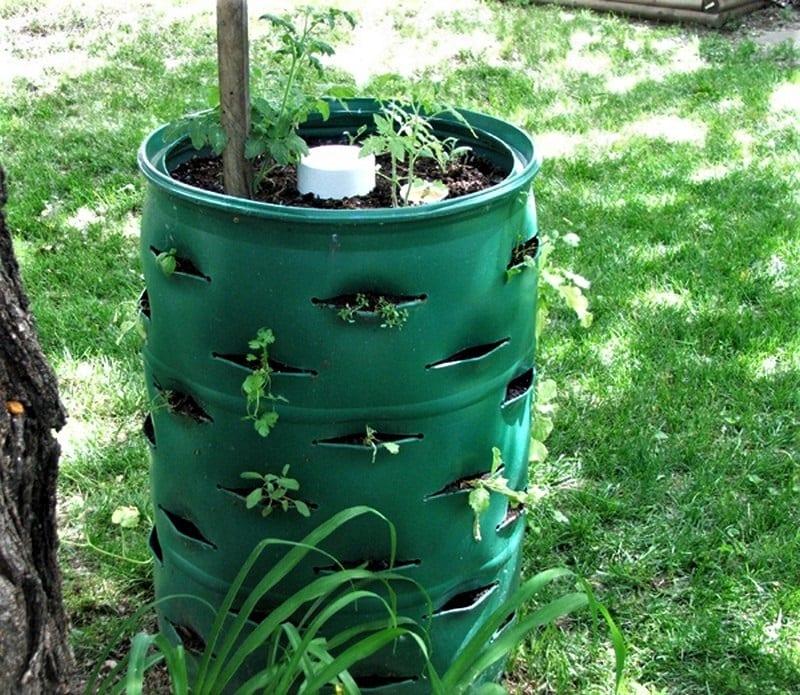 A DIY barrel planter will occupy just a few feet of floor space.