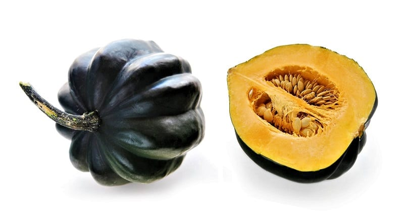 Those with heavily stocked and well-established aquaponic systems might be able to grow squash and other bigger plants.