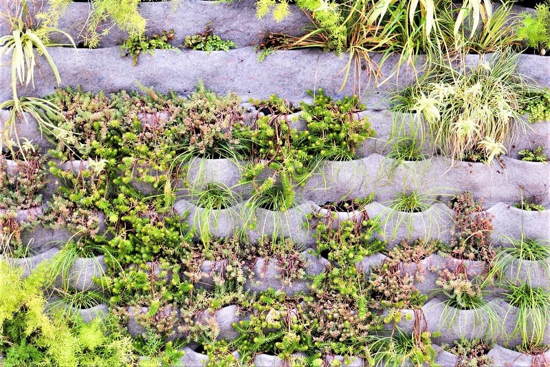 Vertical gardens require little or no weeding. Aesthetically, they can lend beauty to blank or uninspired walls and surfaces.
