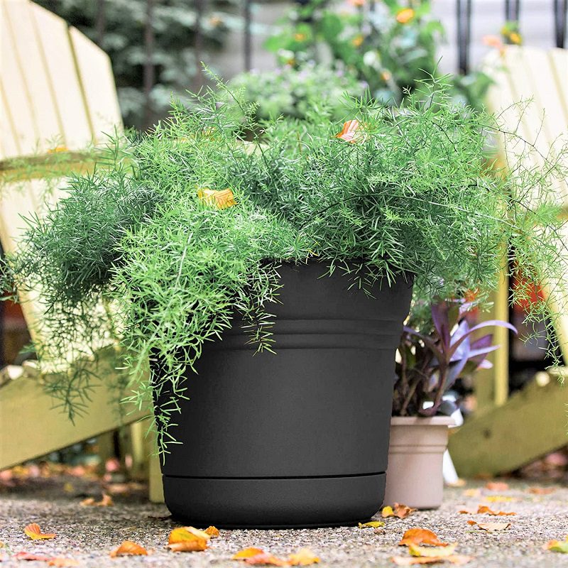 Bloem's Saturn Planters are sturdier and better looking than the other flimsy plastic pots you see online. They're inexpensive and they come with a saucer for catching water.