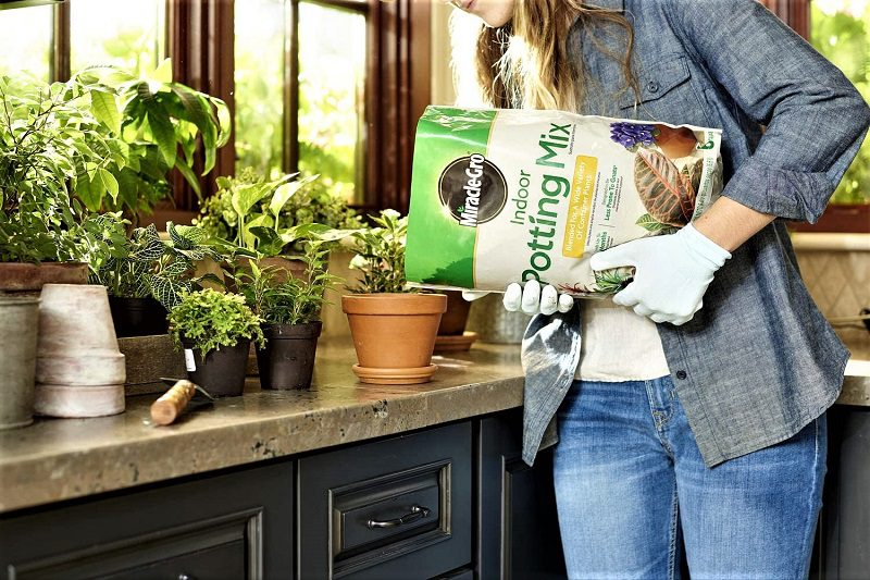 Miracle-Gro's Indoor Potting Mix is an indoor-plant-specific formulation from one of the most famous companies in the business. We like its water retention, porosity, and pH-balancing properties. Miracle-Gro uses coconut coir to ensure that the formulation retains moisture.